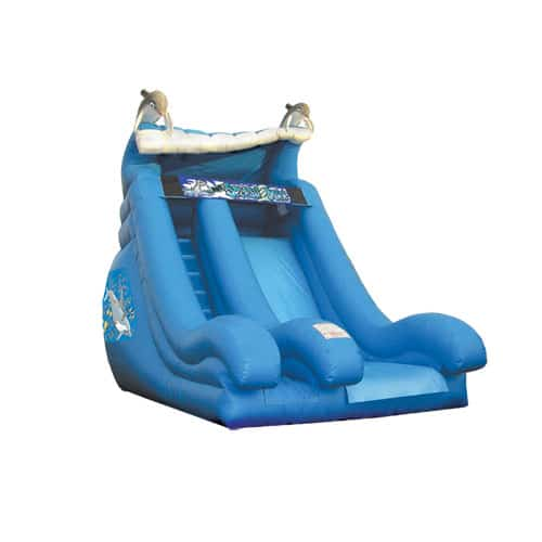 Dolphin inflatable sllide rentals in the Scranton Wilkes Barre area